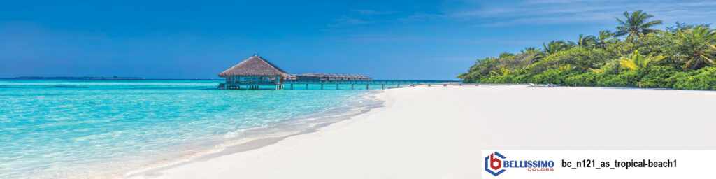 Tropical Beach 1