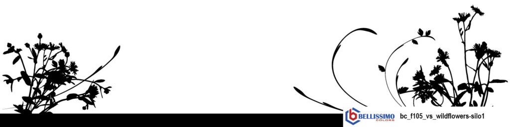 Wildflower silhouette1